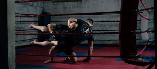 Bolt Wrestling